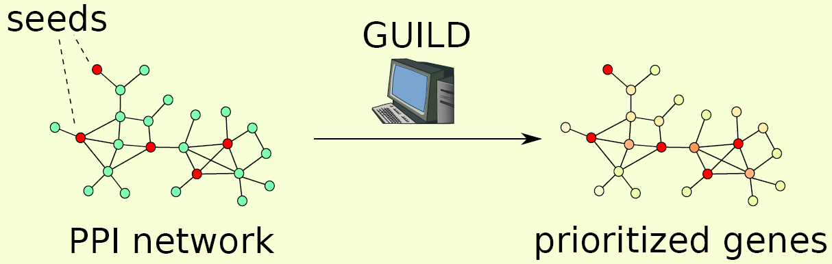 GUILD overview